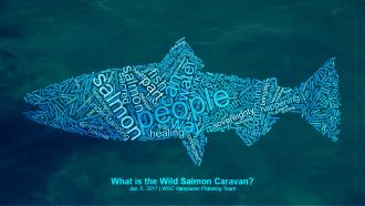 whatisWSC-salmoncloud